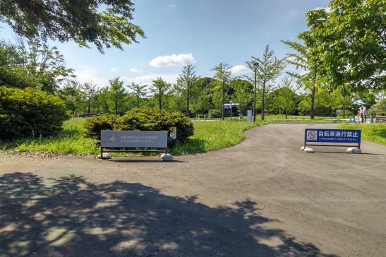 クロスバイクで昭和記念公園のサイクリングコースを走ってみた
