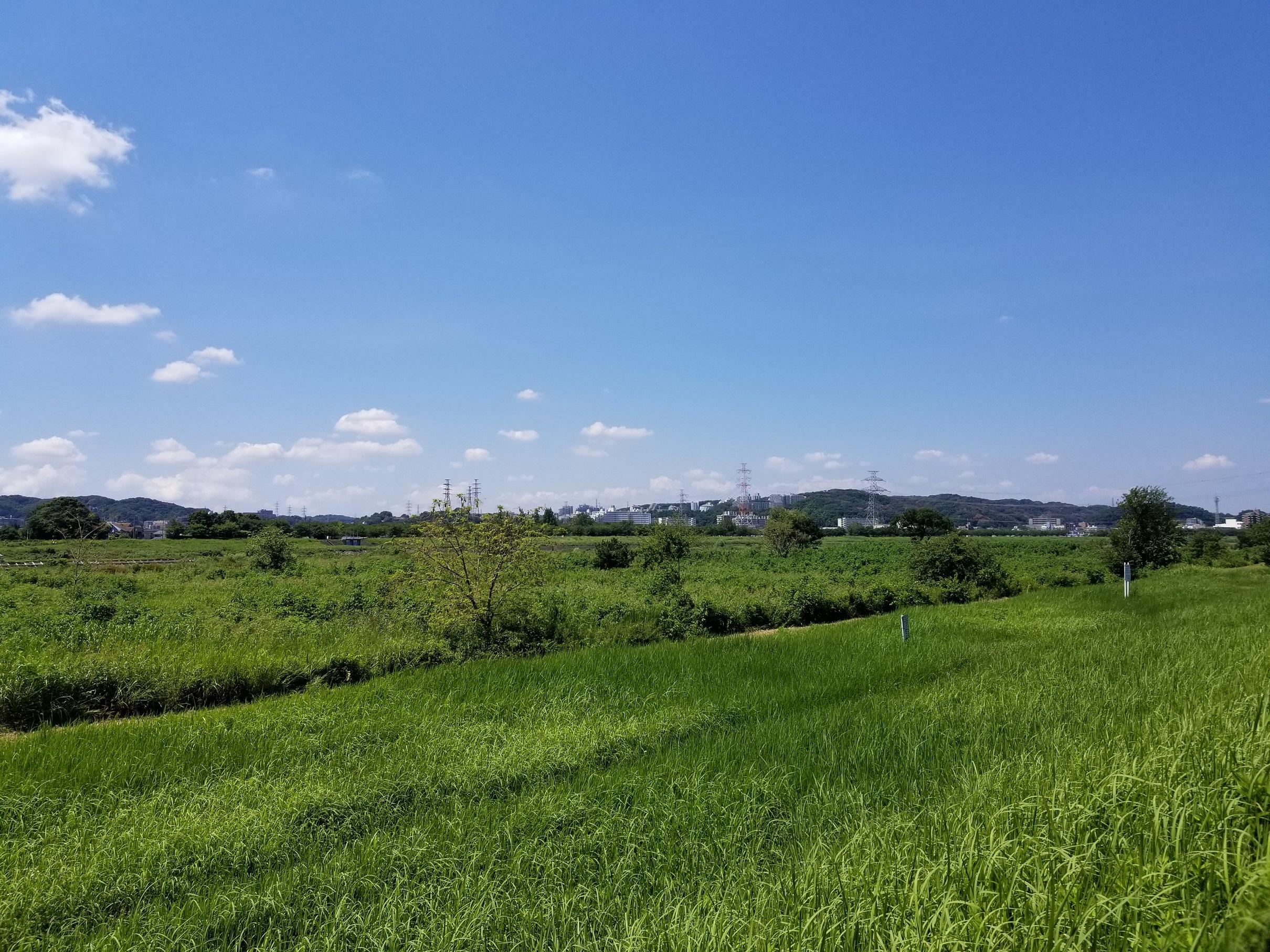多摩川親水公園