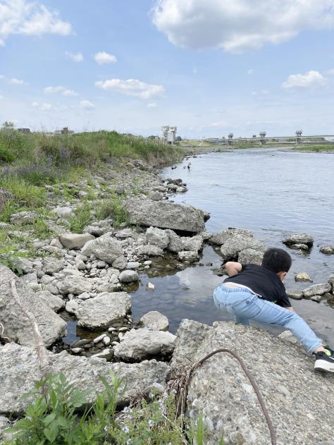 河原で生き物探しする子供